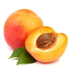 apricotimg1