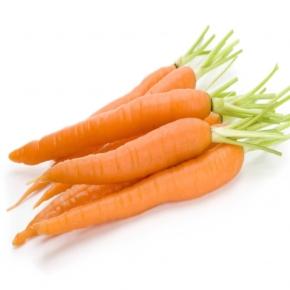 carrot-seed-oil-img