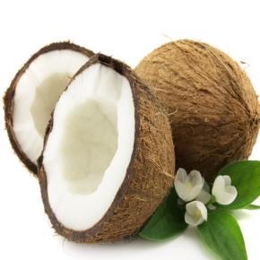 coconut_img1