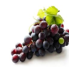 grape_img1