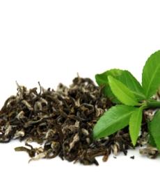 green_tea-img1