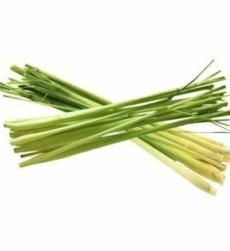 lemon-grass-oil-img