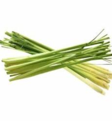 lemongrassimg1