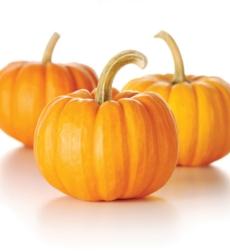 pumpkin_img1