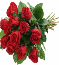 red-roses_1400x