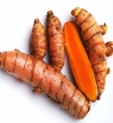 turmeric-root-oil-img