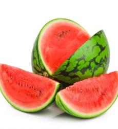 watermelon_img1